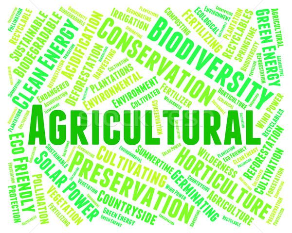Rolniczy słowo słowa gospodarstwa Zdjęcia stock © stuartmiles