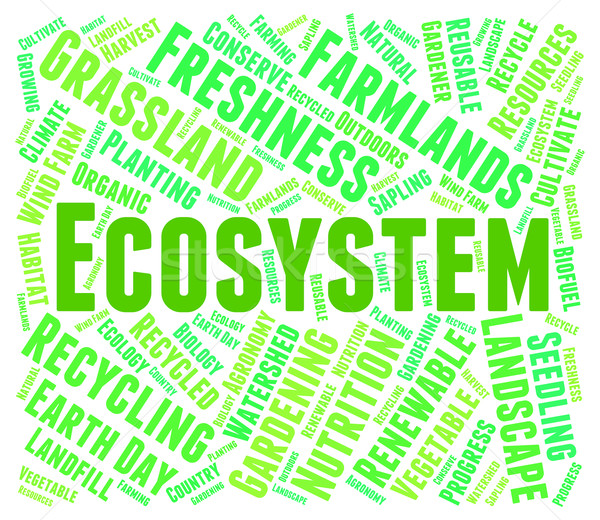 Ecosystem Word Indicates Earth Environmentally And Biospheres Stock photo © stuartmiles