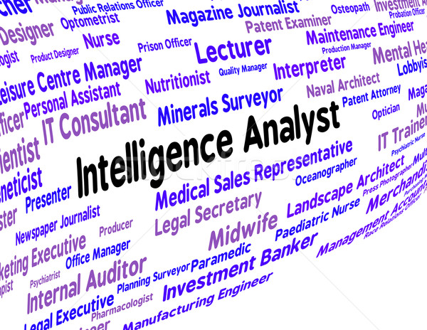 Intelligence Analyst Indicates Intellectual Capacity And Ability Stock photo © stuartmiles