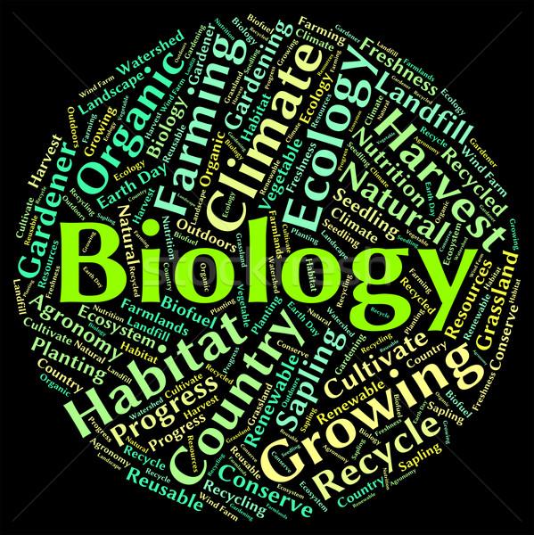 Biology Word Represents Animal Kingdom And Biological Stock photo © stuartmiles
