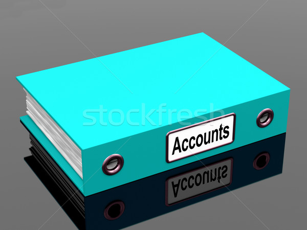 Accounts File Shows Accounting Profit And Expenses Stock photo © stuartmiles