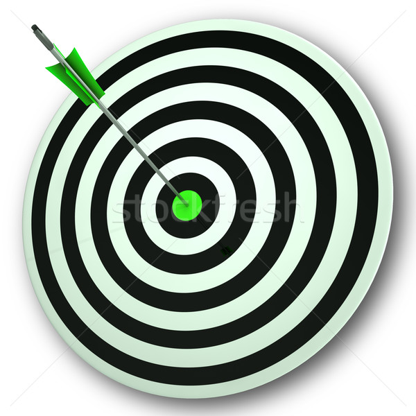 Bulls eye Target Shows Perfect Accuracy And Focus Stock photo © stuartmiles