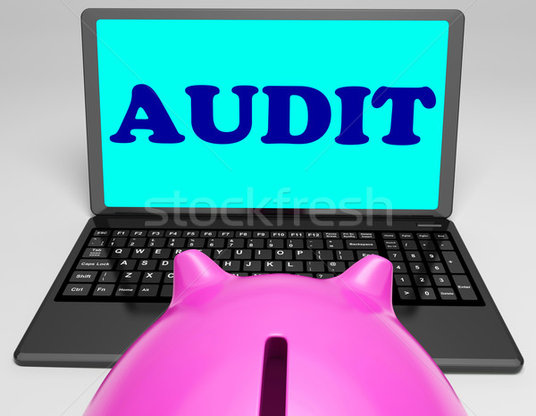 Audit Laptop Means Auditor Scrutiny And Analysis Stock photo © stuartmiles