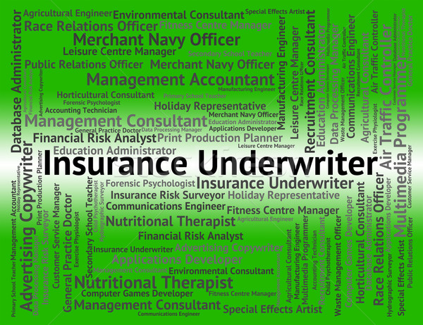 Insurance Underwriter Shows Occupations Protection And Guarantee Stock photo © stuartmiles