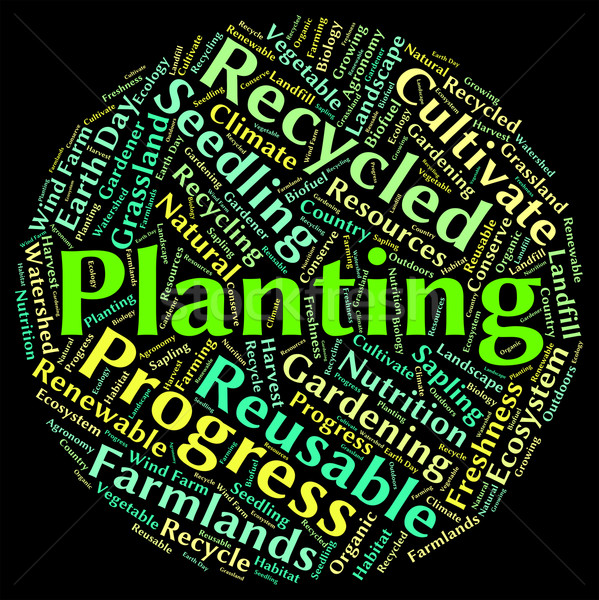 Planting Word Represents Sow Flora And Text Stock photo © stuartmiles
