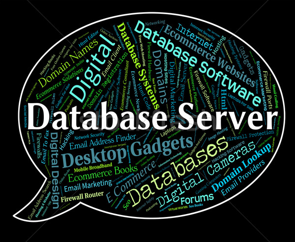 Database Server Shows Word Networking And Databases Stock photo © stuartmiles
