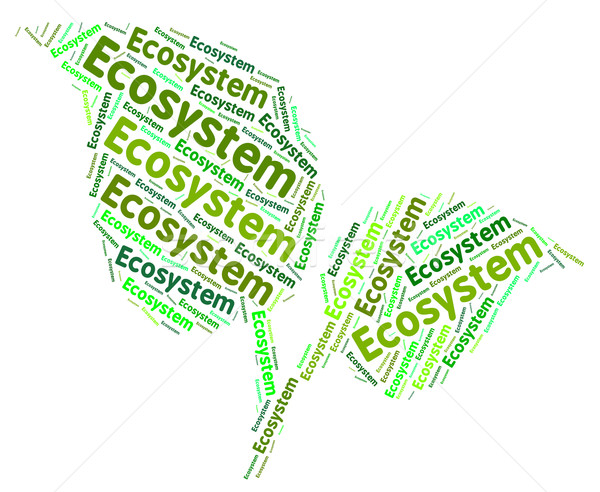 Ecosystem Word Indicates Earth Day And Biosphere Stock photo © stuartmiles