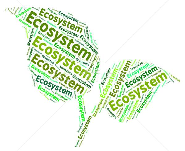 Ekosystem słowo dzień ziemi ziemi planety środowiska Zdjęcia stock © stuartmiles