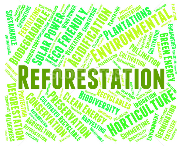 Reforestation Word Means Reforesting Forests And Woodland Stock photo © stuartmiles