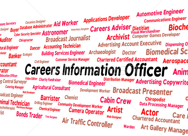 Kariera informacji oficer zatrudnienie wiedzy wsparcia Zdjęcia stock © stuartmiles