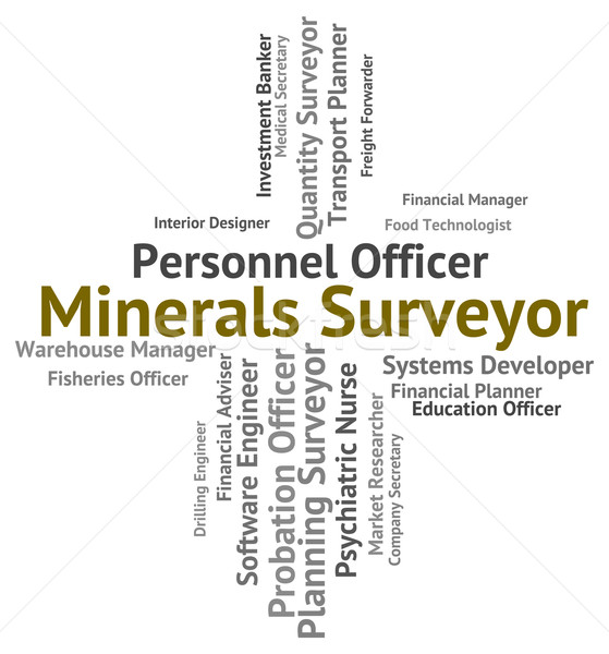 Minerals Surveyor Indicates Jobs Employee And Ores Stock photo © stuartmiles