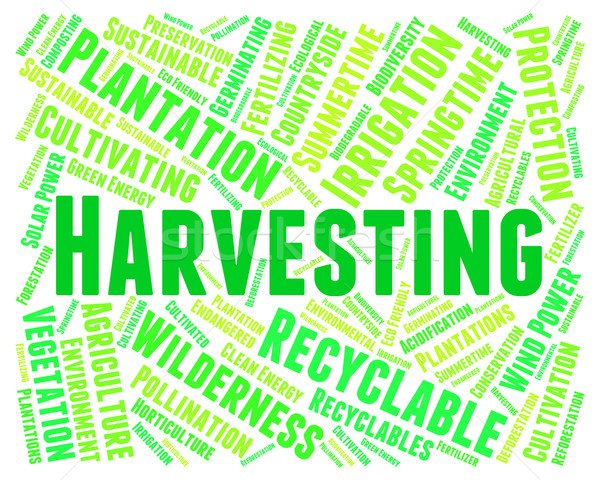 Harvesting Word Means Plants Plant And Harvests Stock photo © stuartmiles