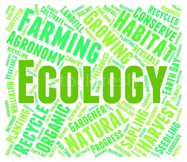 ökológia szó föld napja környezet környezeti biztonság Stock fotó © stuartmiles