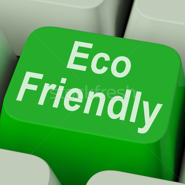 Eco Friendly Key Shows Green And Environmentally Efficient Stock photo © stuartmiles