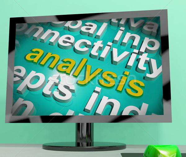 Analysis Word Cloud Screen Shows Probe Examination Stock photo © stuartmiles