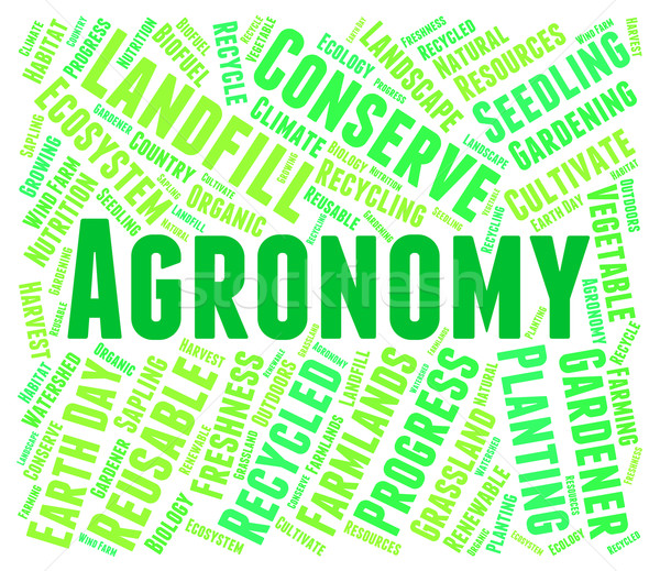 Agronomy Word Shows Farms Cultivation And Farmstead Stock photo © stuartmiles