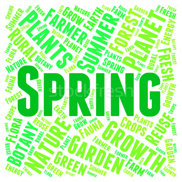 Spring Word Shows Springtide Warmth And Season Stock photo © stuartmiles