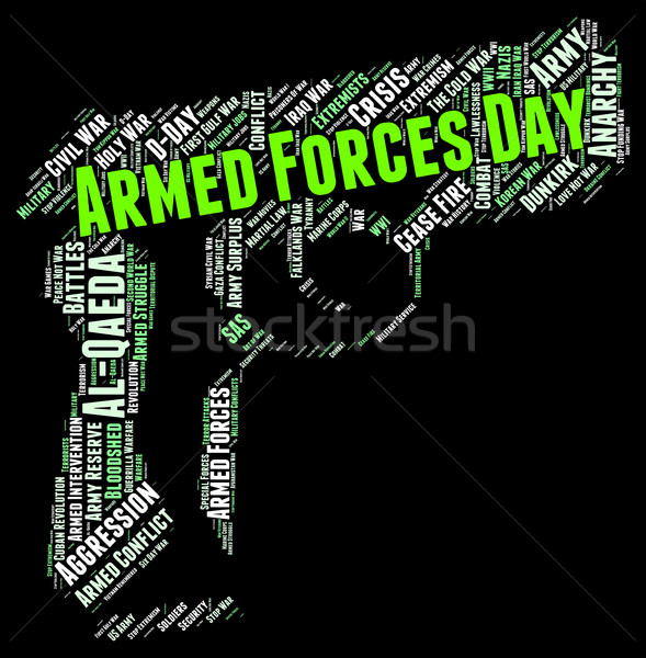 Armed Forces Day Means Military Service And American Stock photo © stuartmiles