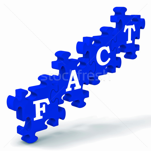 Fact Puzzle Shows Truth And Reality Stock photo © stuartmiles