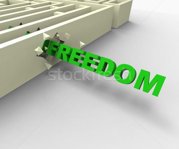 Libertà labirinto libero carcere Foto d'archivio © stuartmiles