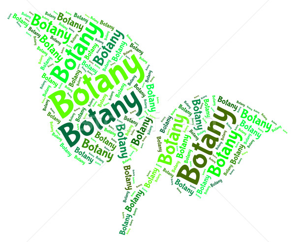 Stock photo: Botany Word Shows Plant Life And Botanical