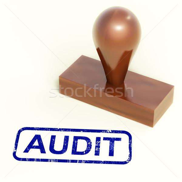 Audytu finansowych rachunkowości badanie Zdjęcia stock © stuartmiles