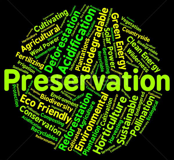 Preservation Word Represents Earth Friendly And Conserve Stock photo © stuartmiles