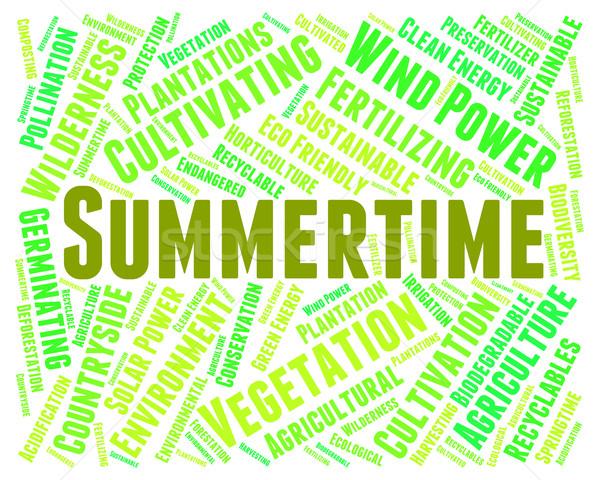 Summertime Word Represents Text Warm And Season Stock photo © stuartmiles