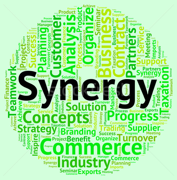 Synergy Word Indicates Working Together And Cooperation Stock photo © stuartmiles