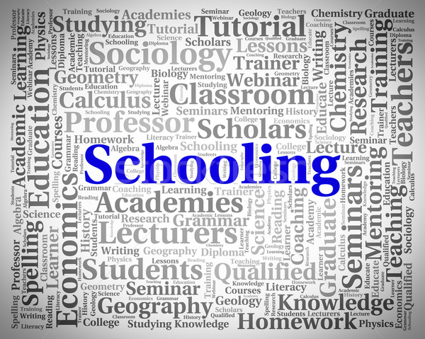 Schooling Word Represents Schools Colleges And Educated Stock photo © stuartmiles