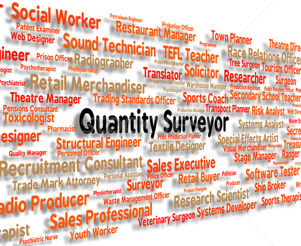Quantity Surveyor Shows Employment Measurer And Words Stock photo © stuartmiles