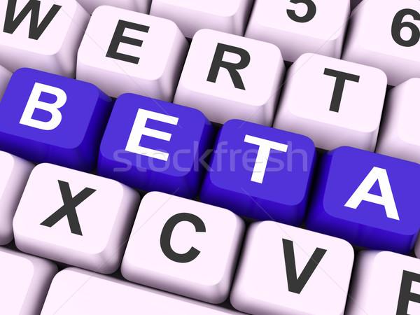 Beta sleutels show ontwikkeling test versie Stockfoto © stuartmiles