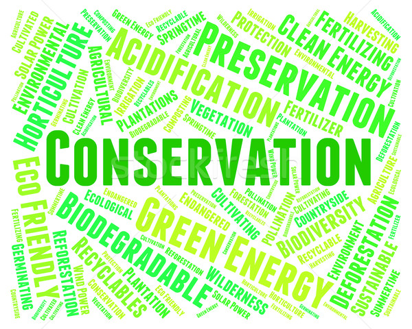 Conservation Word Indicates Earth Friendly And Conserving Stock photo © stuartmiles