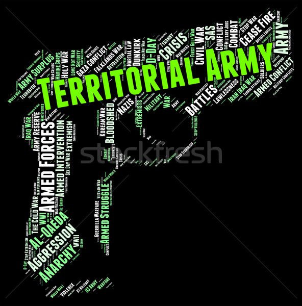 Territorial Army Represents Military Action And Tavr Stock photo © stuartmiles