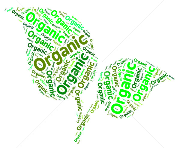 Organic Word Shows Nature Healthful And Biological Stock photo © stuartmiles