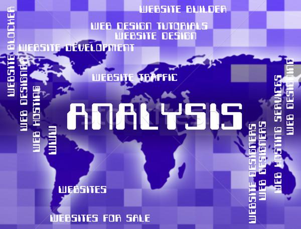Elemzés szó adat analitika mutat kutatás Stock fotó © stuartmiles