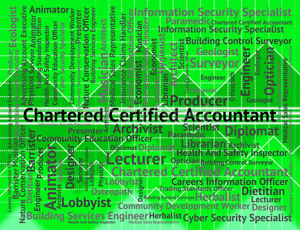 Chartered Certified Accountant Means Balancing The Books And Acc Stock photo © stuartmiles