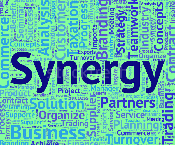 Synergy Word Means Team Work And Partner Stock photo © stuartmiles