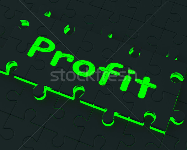 Profit Puzzle Shows Earnings And Investment Stock photo © stuartmiles
