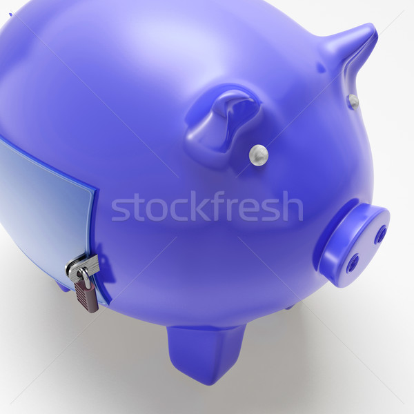 Piggybank With Closed Door Showing Financial Security Stock photo © stuartmiles