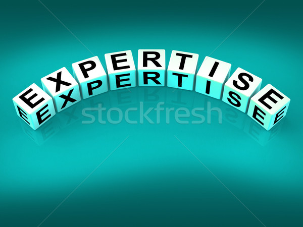 Expertise Blocks Mean Expert Skills Training and Proficiency Stock photo © stuartmiles