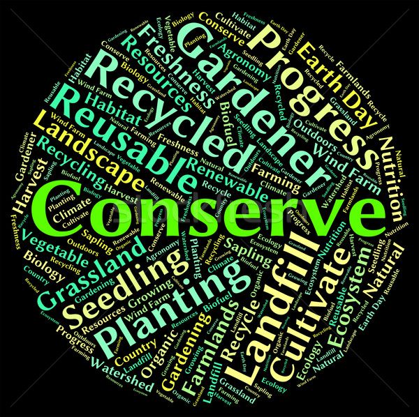 Conserve Word Indicates Sustain Protecting And Conservation Stock photo © stuartmiles