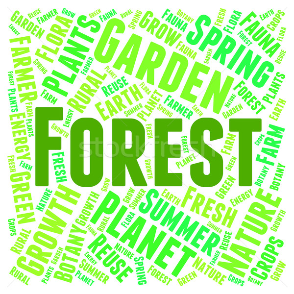 Forest Word Means Trees Copice And Park Stock photo © stuartmiles