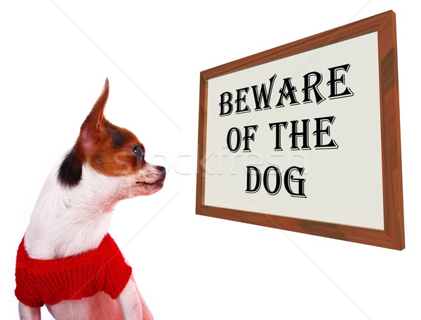 Beware Of The Dog Sign Showing Protection And Warning Stock photo © stuartmiles