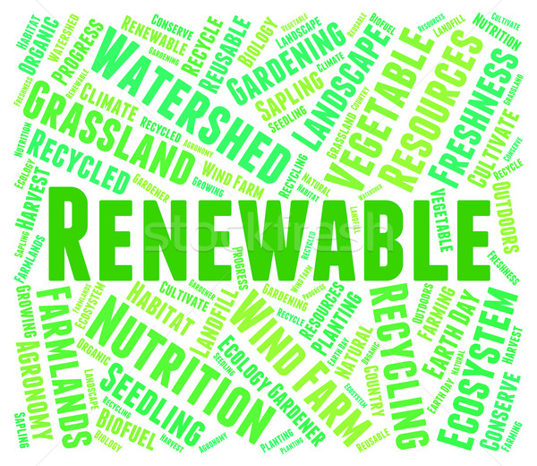 Renewable Word Shows Go Green And Recyclable Stock photo © stuartmiles