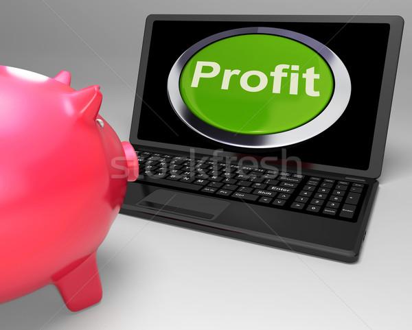 Kâr düğme dizüstü bilgisayar finansal büyüme ticari Stok fotoğraf © stuartmiles