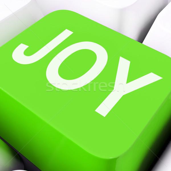 Joy Keys Mean Enjoy Or Happy Stock photo © stuartmiles