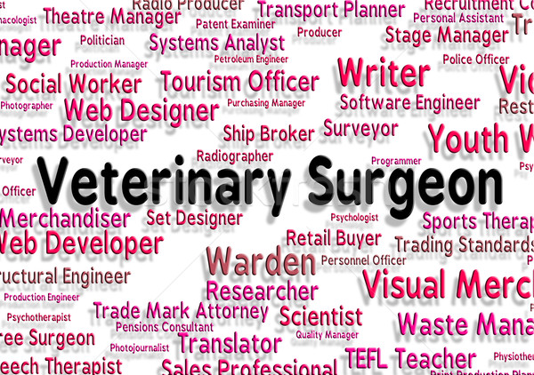 Veterinary Surgeon Indicates General Practitioner And Career Stock photo © stuartmiles