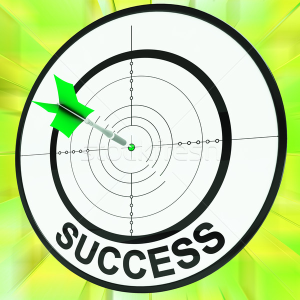 Success Target Shows Development Ideas And Vision Stock photo © stuartmiles
