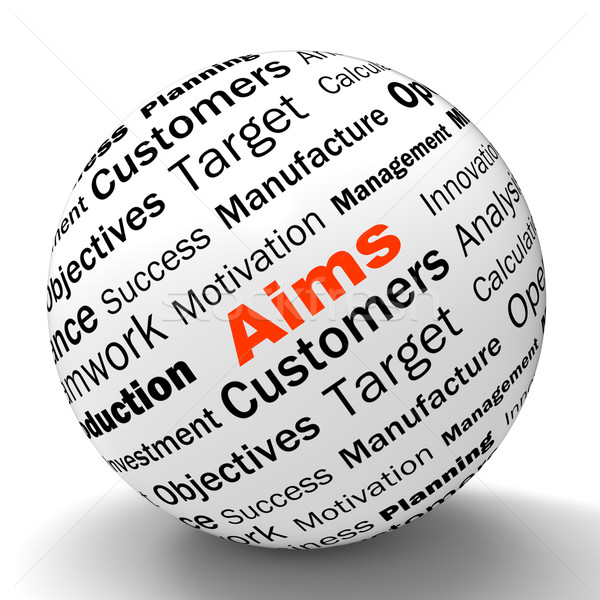 Aims Sphere Definition Means Business Goals And Objectives Stock photo © stuartmiles